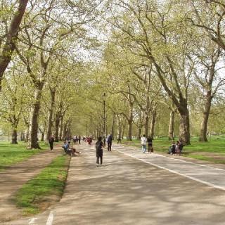 Hyde Park är perfekt för löpturer!
