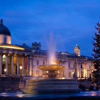 Missa inte Londons största julgran på Trafalgar Square!
