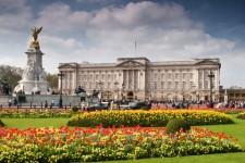 Missa inte Buckingham Palace