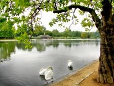 Hyde Park i centrala London