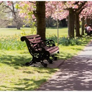 Njut av våren i London