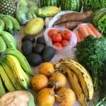 Testa närproducerad och ekologisk mat i London