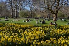 Njut av ett grönskande London