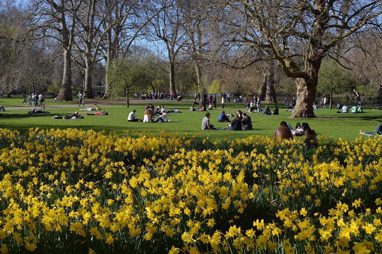 Nu grönskar det i London
