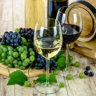 Testa olika viner under en hel vecka